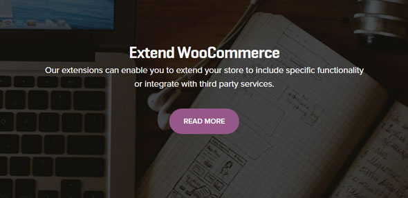 206 WooCommerce Extensions Pack + Updates